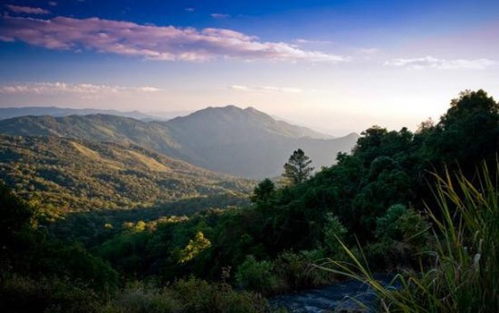 doi-inthanon-national-park 2