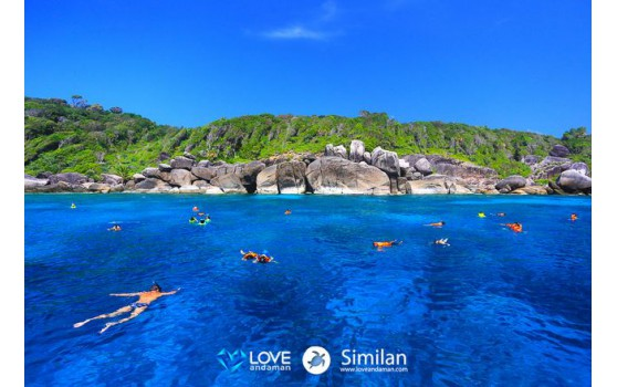 similan-islands-snorkeling1