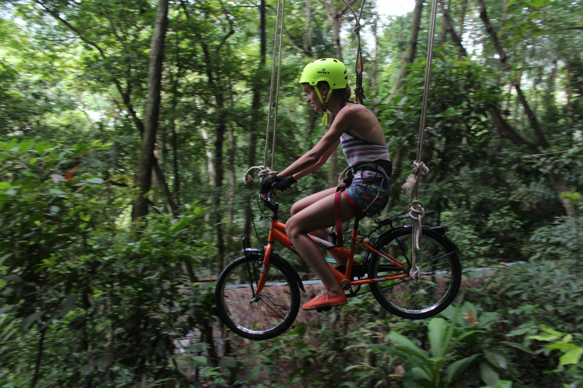 Tree top adventure 3