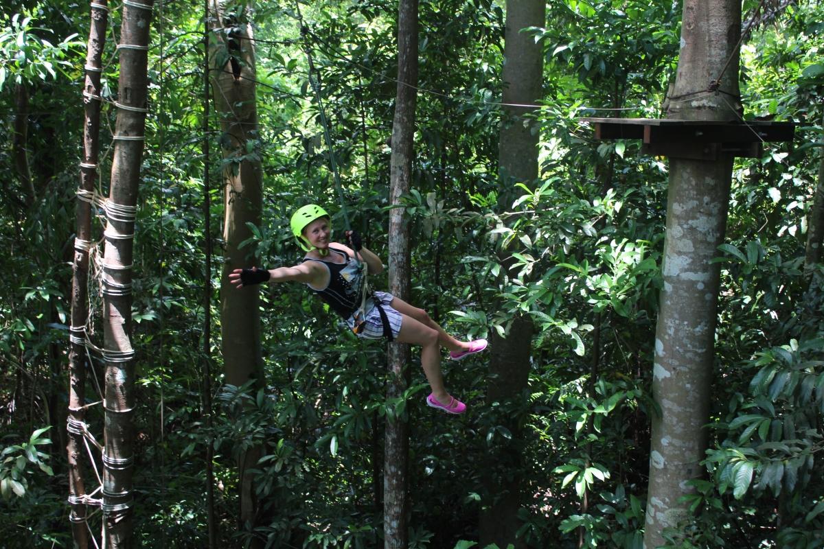 Tree top adventure 4
